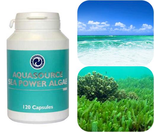 sea power algae
