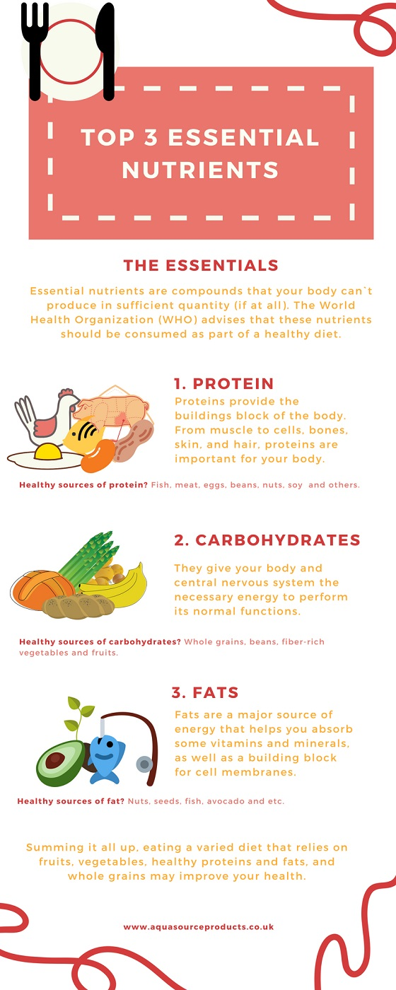 infographic about Essential nutrients - proteins, fats, carbohydrates